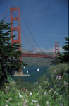 Foto, Bild: Golden Gate Bridge vom Park aus