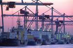Feederschiffe am Eurogate Container Terminal Hamburg im Abendlicht