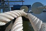 Schiffstaue mit Rattensperren zum Kai am HHLA Container Terminal Burchardkai Hafen Hamburg