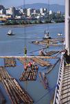 Holzumschlag, Baumstämme, Floß, Verladung von ganzen Baumstämmen im Holzhafen Fraser Port bei Vancouver, Kanada