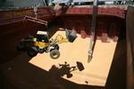 Radlader wird zum Zusammenschieben der Maisreste in die Luke des Massengutfrachters (Bulker) gehievt