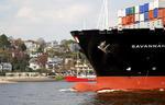 Bug der SAVANNAH EXPRESS mit Wulstbug (Bulb, Schiffsnase) vor Elbufer mit Strand und Villen